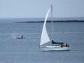 boats-1-6