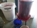 Winemaking-16